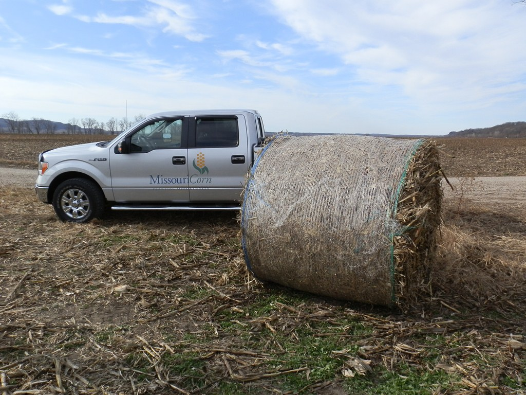 bale of corn stover
