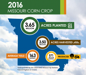 2016 Missouri Corn Crop 300x264 1