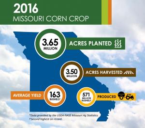 2016 Missouri Corn Crop 300x264 1