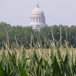Legislative Voice
